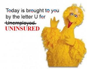 big-bird-uninsured
